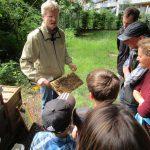 Besuch des Lehrbienenstands im ERBA-Park