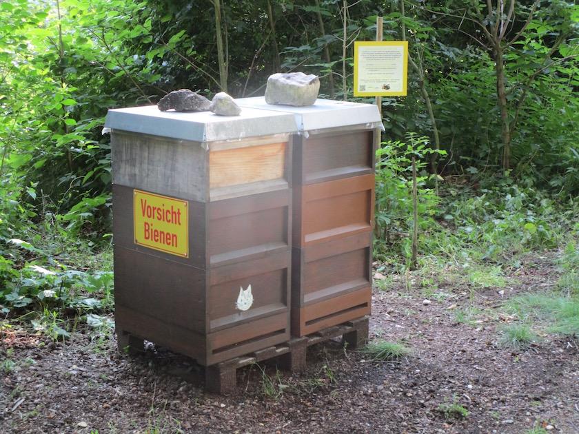 Erba-Park-Bienen