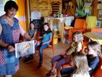 01_154433-Hainschule-Fv-Schulbienenunterricht