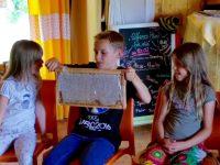 08_160616-Hainschule-Fv-Schulbienenunterricht