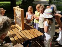 11_163348-Hainschule-Fv-Schulbienenunterricht-Lehrbienenstand