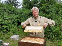 Spritzprobe der halb verdeckelte Honigwabe aus Sabines Patenvolk