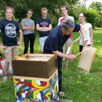Professor Drechsel kehrt Bienen ab