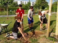 Umgriffarbeiten an der Bienen-InfoWabe durch Pfadfinder St. Josef Bamberg