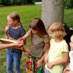 Honigschlecken am Lehrbienenstand im Erba-Park Bamberg