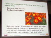 Vortragsfolie @ Barbara Bartsch zur Bayerischen Blume des Jahres 2016