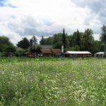 """Blick über das Bioversuchsgelände zur """"Bienen- und Imkerecke"""""""
