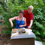 Honigerntehelferin lockert Honigwabe mit dem Stockmeisel