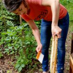 Lena kehrt Bienen ab