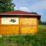 Spontanbewuchs an der Bienen-InfoWabe