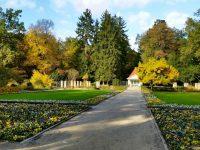Alter Botanischer Garten, jetzt ohne alte Eiche