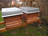 Bienenvölker abzugeben