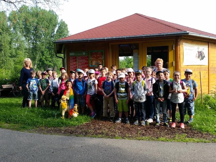 ilian-Grundschule Scheßlitz, Klasse 2a+2b, am 23.05.2017 in Bamberg, Bienen-InfoWabe