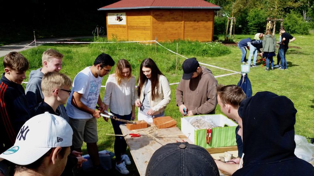 Wirtschaftsschüler statten Widlbienenhotel aus