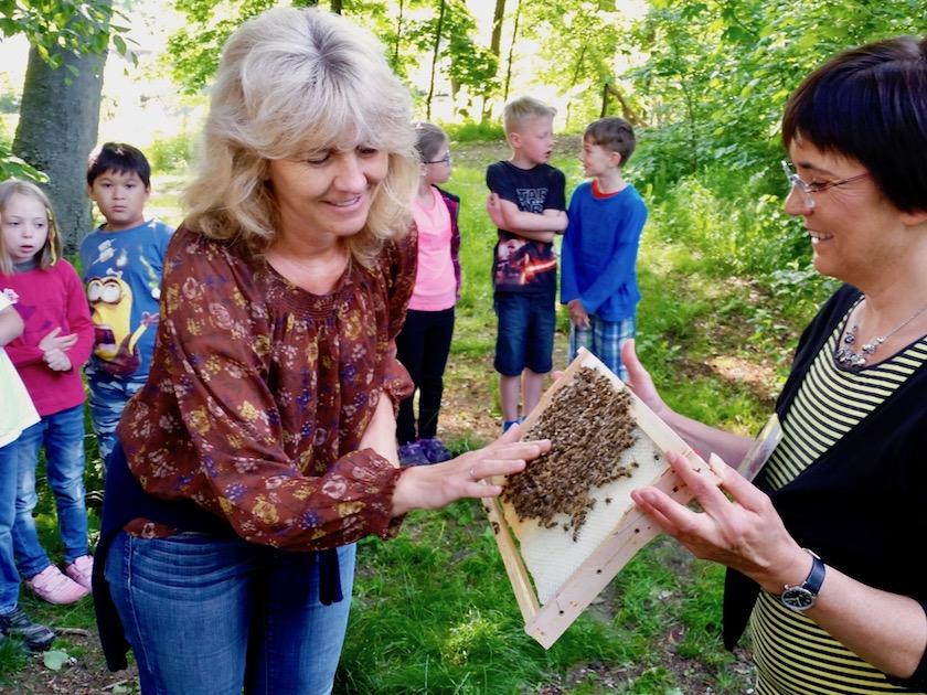 Klassenleiterin Frau Müller traut sich die Bienen streicheln