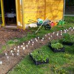 Alles bereit zum Bepflanzen des Schau-Staudenbeets 1 an der Bienen-InfoWabe