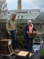 Bienenführung in der Hofstadt-Gärtnerei Dechant