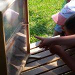 Schülerkreis um Schaufensterbeute.