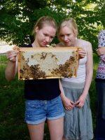 Teilnehmende mit bienenbesetzten Rähmchen im VHS-Kurs zur Imkerei