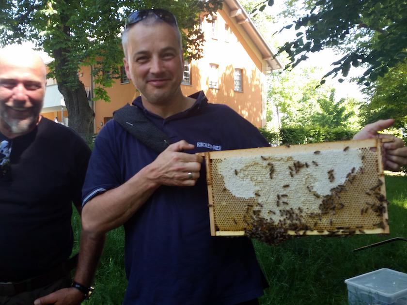 Teilnehmender mit bienenbesetzten Rähmchen im VHS-Kurs zur Imkerei