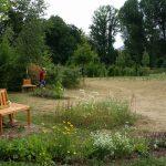 Bienengartenoase an versteppter Sommerwiese