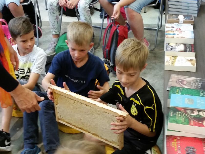 Schüler der 3a schnuppern an echter Honigwabe