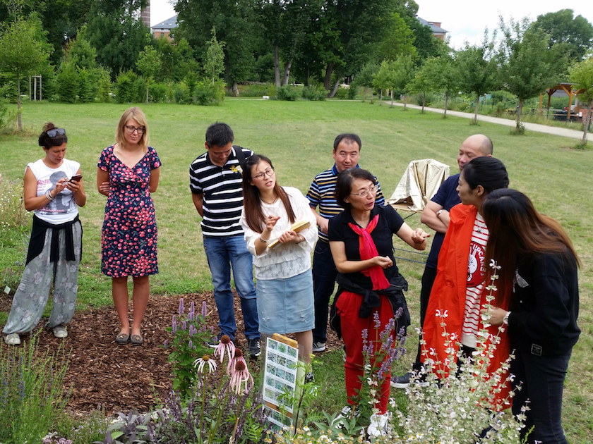 Chinesische Delegation im Bamberger Bienengarten vor Kräuter-Schaubeet