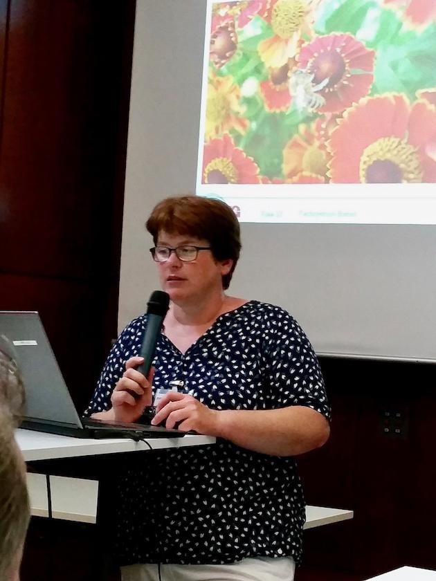Vortrag Dr. Ingrid Illies zu Bienenweiden für Beet und Balkon