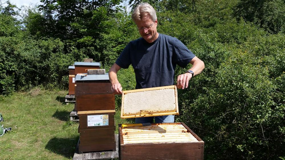 Reinhold zieht Honigwabe aus Volk von Bienenpatin Elisabeth Burger