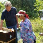 Anne wirft einen Blick in das Bienenvolk