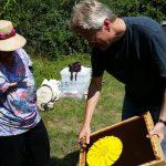 Reinhold erläutert die Funktionsweise einer Bienenflucht