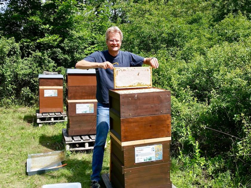 Reinhold zieht Honigwabe aus Volk von Bienenpatin Ina Kudlich