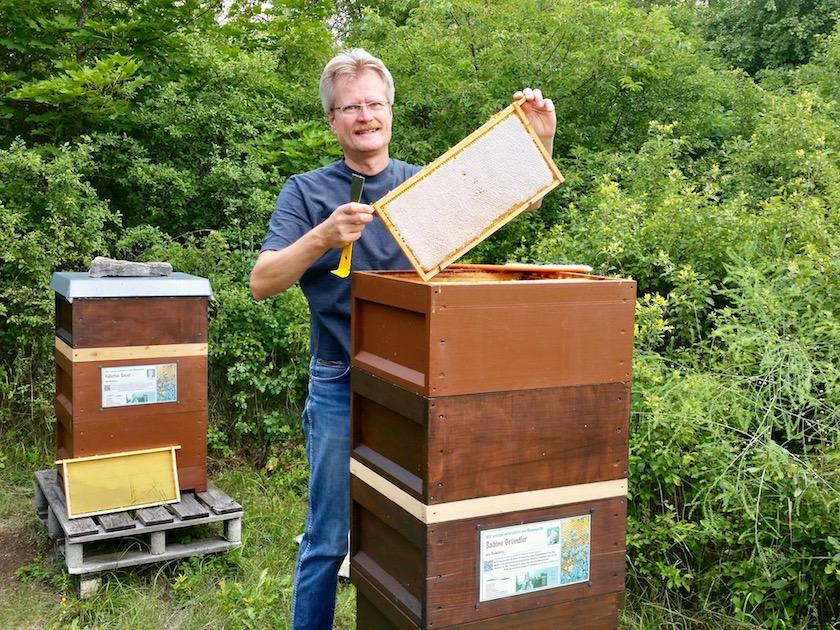 Reinhold zieht Honigwabe aus Volk von Bienenpatin Sabine Gründler