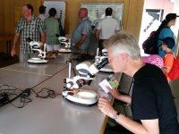 Mikroskopieaufbau im Saal der LWG