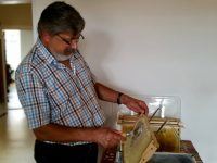 Entdeckeln der Rapshonigwabe von Michael, zu Gast bei Bienen-leben-in-Bamberg.de