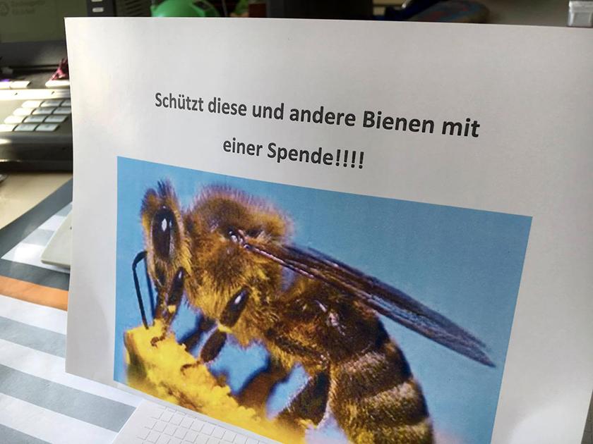 Spendenaufruf von Sabine Saam