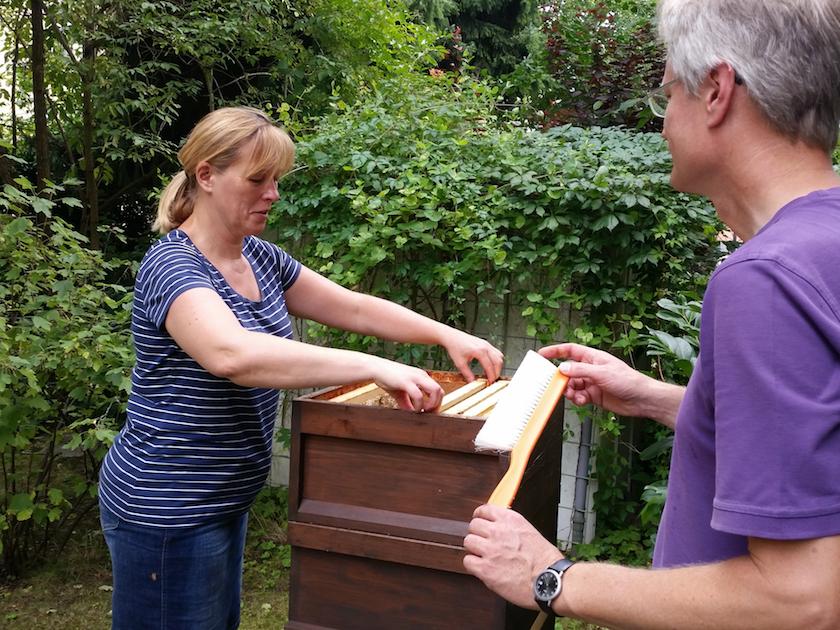 Rita entnimmt eine Honigwabe aus der Beute