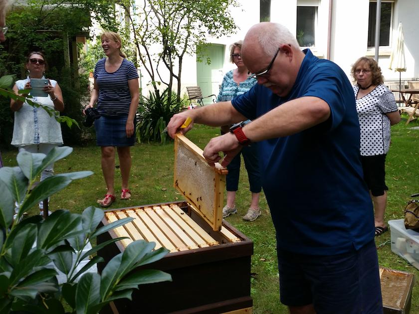 Stefan entnimmt eine Honigwabe aus der Beute
