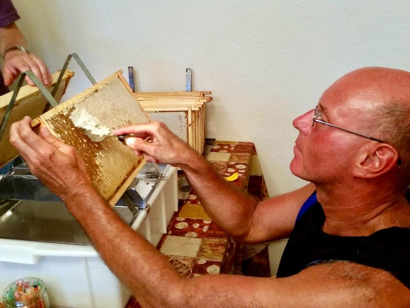 Hans entdeckelt eine Honigwabe