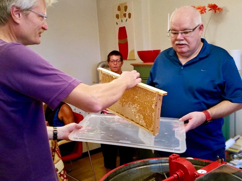 Reinhold und Stefan bugsieren die tropfende Honigwabe zur Schleuder