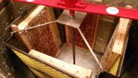 Blick in den Honigschleuderkorb