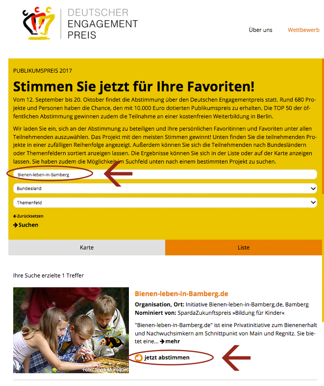 Voting für Publikumspreis 2017 des Deutschen Engagementpreis
