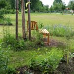 Idylle mit Sitzbänken im Bamberger Bienengarten