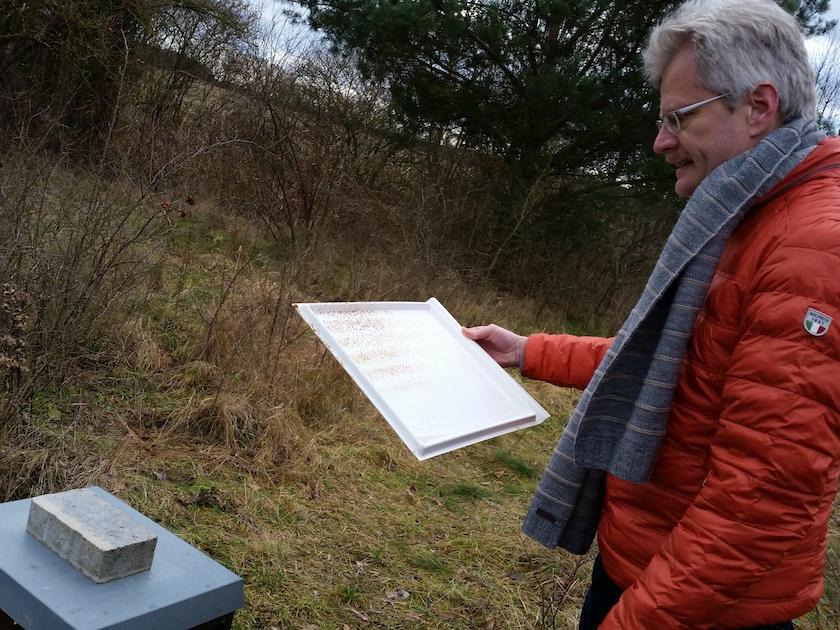 Winterkontrolle der Bienenvölker in den Buger Wiesen