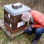 Geräuschkontrolle zur Winterkontrolle der Bienenvölker in den Buger Wiesen