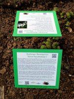 Infotafeln im Bamberger Bienengarten