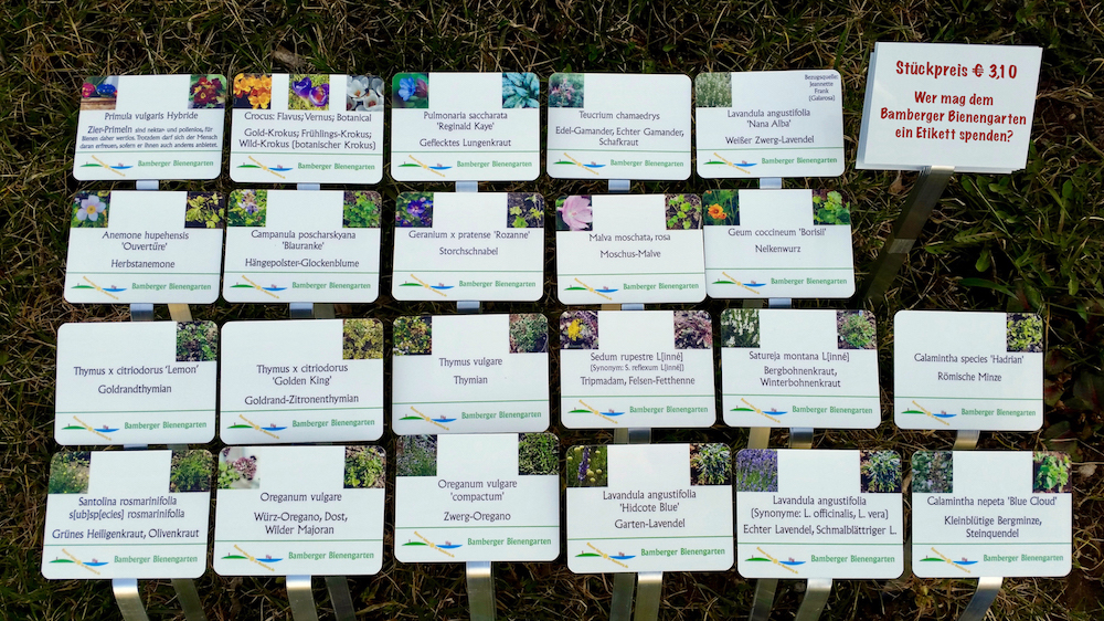 Botanische Pflanzetiketten im Bamberger Bienengarten