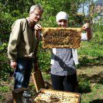 """Lehramtsanwärterin mit Bienenwabe am Lehrbienenstand """"Fünferlessteg"""""""