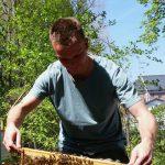 """Lehramtsanwärter mit Bienenwabe am Lehrbienenstand """"Fünferlessteg"""""""