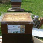 Lehrbienenstand Bienenweg zur BIWa-Sonntagsöffnung